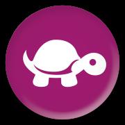 TIT-Buttons-2_5-COL-purple